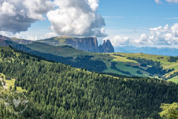 Escursioni Val di fassa: giro ad anello del Sassolungo