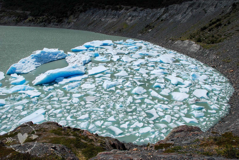 Lago Grey - Torri del Paine Cile