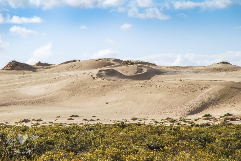 Dune di sabbia Penisola Valdes