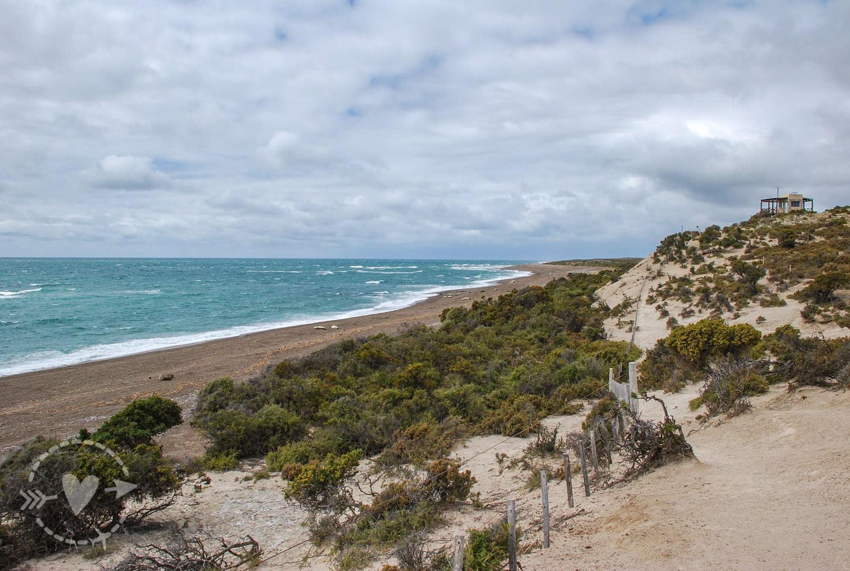 Spiaggia di Punta Norte, Penisola Valdes, Argentina