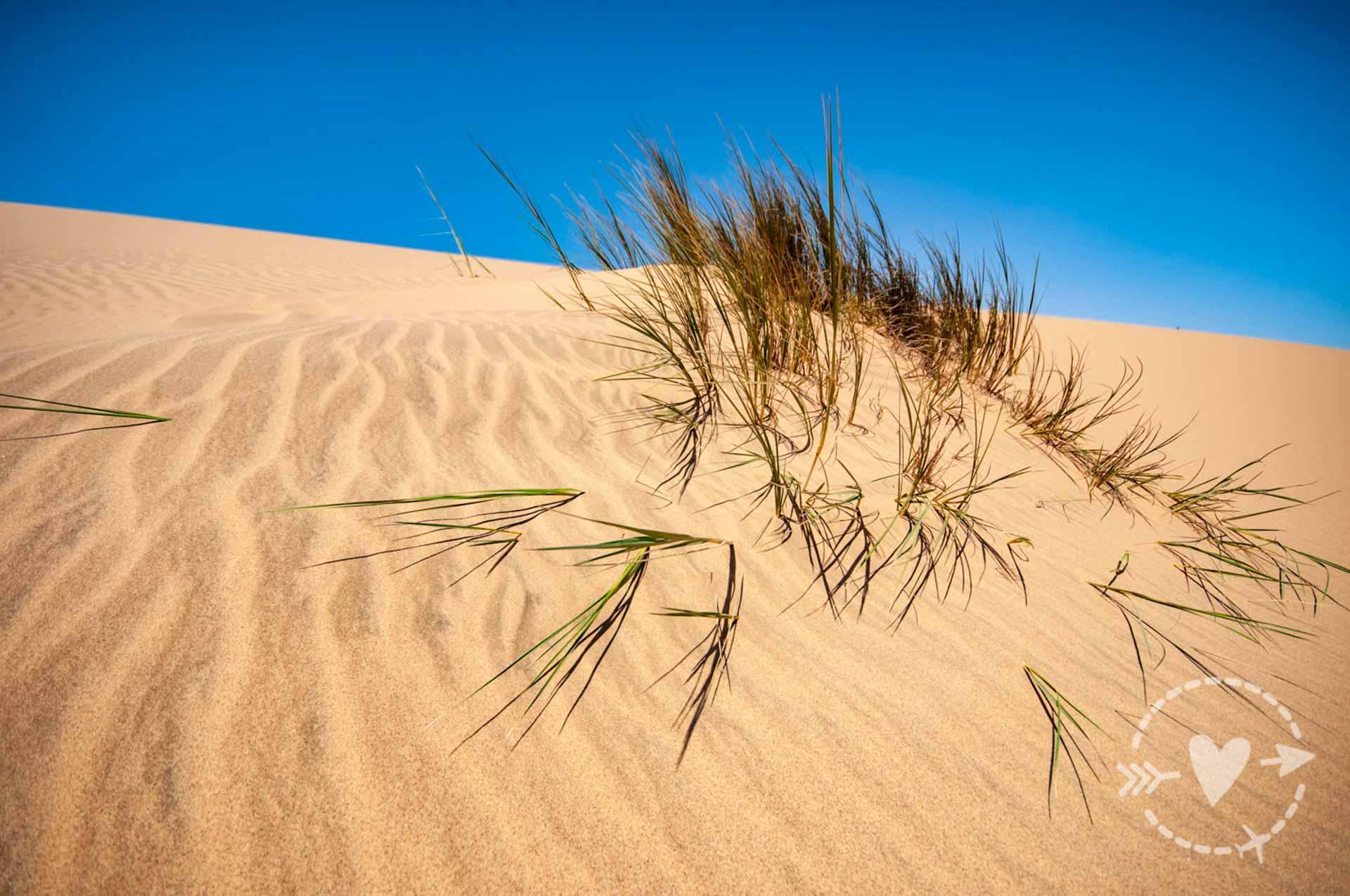 20 giorni in Namibia fai da te on the road - le foto