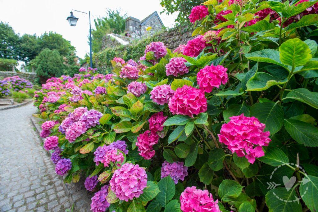 Locronan, Normandie, France