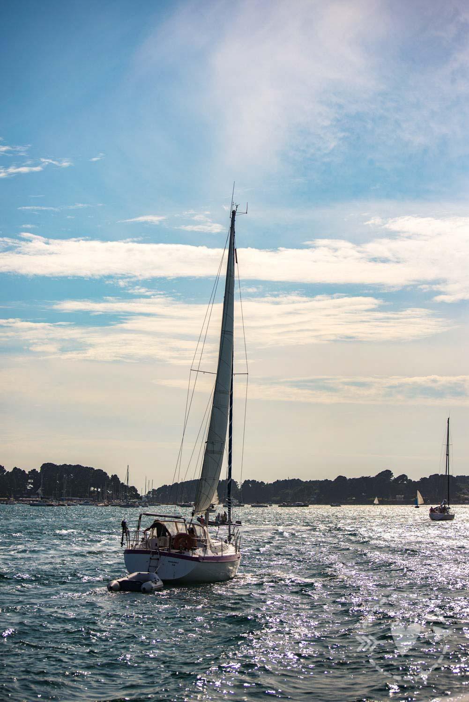 Golfo di Morbihan, Vannes, Bretagna, Francia