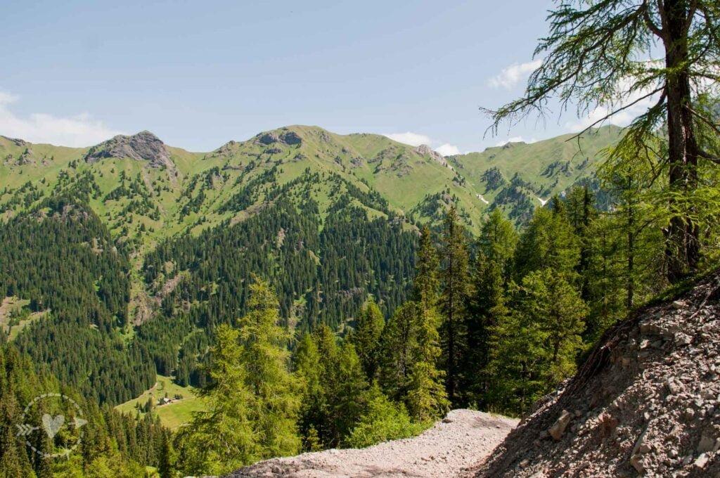 Escursione in Val di Fassa: Il giro del Lagusel