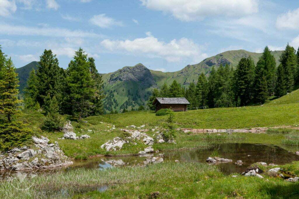 Il Lagusel in Val di Fassa